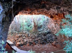 Internal views of Undara Lava Tubes