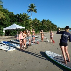 Introduction To Stand Up Paddle Boarding On Low Isles | Full Day Trip