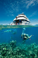 More information aboutHalf Day - Full Day Great Barrier Reef Tour | Upgrade Helicopter Package