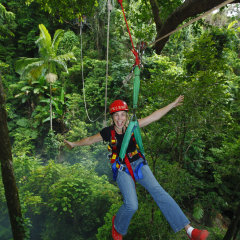 It's a blast Jungle Surfing Daintree Cape Tribulation