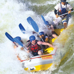 It's Oars up on the White Water Rafting tour in Cairns at Barron Gorge