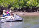 More information aboutCrocodile Spotting Jet Ski Tour | Cairns Water Sports