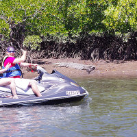 Great Barrier Reef Tour | Croc Spotting Jet Ski Tours Cairns