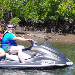 Great Barrier Reef Tour | Jet Ski Croc Spotting Tours Cairns