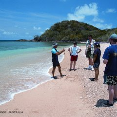 Join a marine biology walk around the island and get to know the interesting things about the Great Barrier Reef