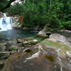 Josephine Falls | Day Tour Departs Daily From Cairns