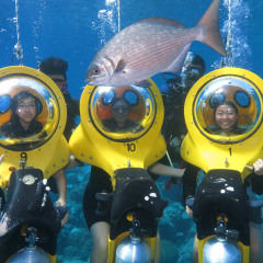 Jump on a Scuba Doo tour with your friends in Cairns on the Great Barrier Reef