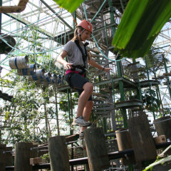Jump on our zip line and fly above ferocious crocodiles