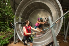 Jungle Surfing Hamster Wheel