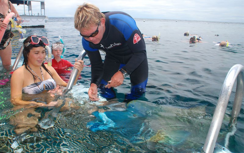 Great Barrier Reef Tour For Families Interactive Platform