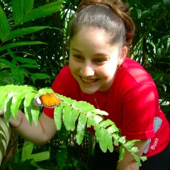 Kuranda Family Activity | Australian Butterfly Sanctuary | Departs From Cairns North Queensland
