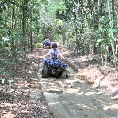 Kuranda Rainforest ATV Tour With Pickups From Cairns