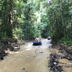 Kuranda Rainforest ATV Tour With Pickups From Northern Beaches