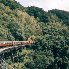 Kuranda Train Tours - Kuranda Village Tours