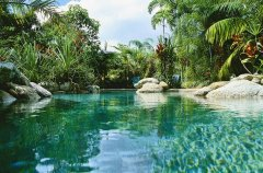 Lagoon Pool - Kewarra Beach Resort