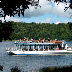 Volcana Crater Cruise - Lake Barrine Wildlife Cruise - Atherton Tablelands - Cairns