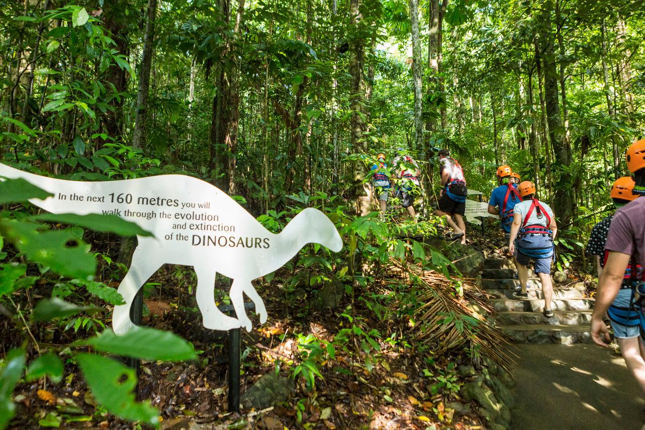 Best Rainforest Tours In Cairns