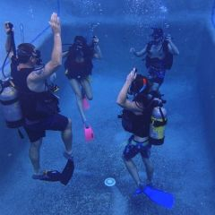 Learn to Scuba Dive in Heated Pool Cairns
