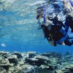Learn To Scuba Dive On The Great Barrier Reef From The Newest Boat | Reef Day Trip