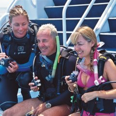learn to scuba dive on the Great Barrier Reef