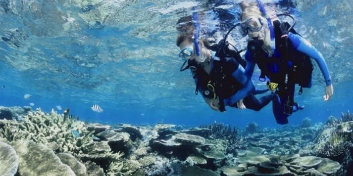 Liveaboard Diving, Liveaboard Dive Trips | Scuba Diving