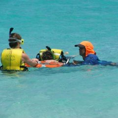 Learn to snorkel in safety on the Great Barrier Reef