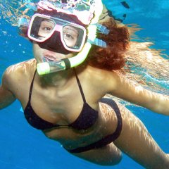Learn to snorkel on the Great Barrier Reef in Australia