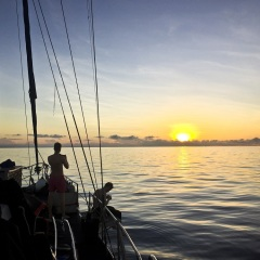 Liveaboard Dive & Snorkel Tours from Cairns - Sunset Great Barrier Reef