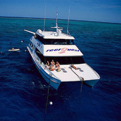 Liveaboard From 1 Night To 6 Nights | Departs From Cairns And Stay On The Great Barrier Reef
