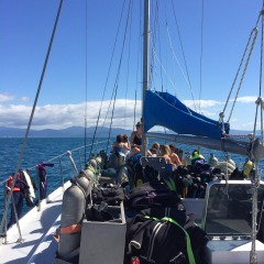 Liveaboard Scuba Diving Trip With All Snorkelling & Intro Diving Equipment Included | Departs From Cairns Tropical North Queensland | Over 8 Hours Of Water Activities
