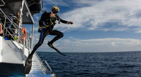 Liveaboard Scuba Diving Cairns | Diving In