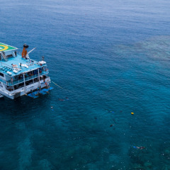 Liveaboard Snorkel & Dive | 2 to 4 Days On The Great Barrier Reef