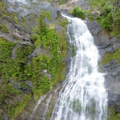 Look out the window of the Kuranda Scenic Railway train and see waterfalls coming  down mountains
