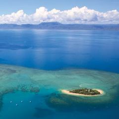 Great Barrier Reef Tour | Ariel View Low Island Low Isles | Half Day Snorkel tour