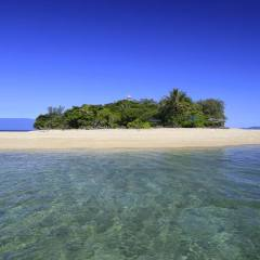 Great Barrier Reef Tour | Low Island Low Isles on Half Day Snorkel Tour
