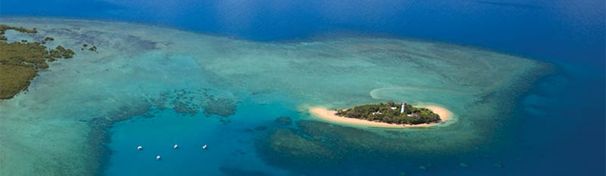 Great Barrier Reef Tour | View of Low Isles from Above | Half Day Low Isles Tour