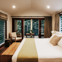 Luxurious Accommodation amongst the Rainforest - Canopy Bayans at Daintree Ecolodge & Spa