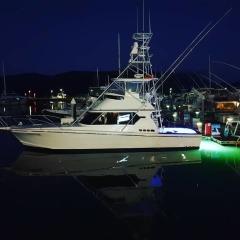 Luxury charter boat in Cairns Marlin Marina at night