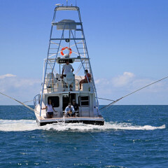 Luxury Charter Boats Port Douglas | Day - Overnight Dive & Snorkel Tours