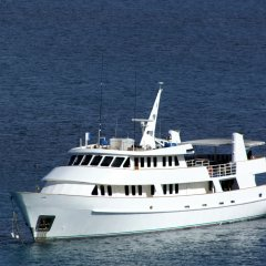 Luxury cruises Great Barrier Reef Australia