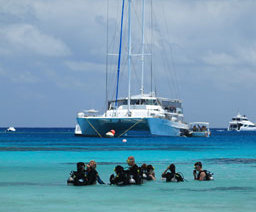 Cairns snorkel tour, Great Barrier Reef Trip - Michaelmas Cay