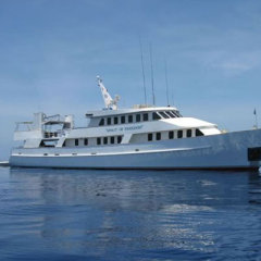 Great Barrier Reef Liveaboard Dive Tour,  Cod Hole, Ribbon Reefs, Coral Sea