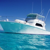 Cairns Reef Fishing - Luxury Private Charter Boat | Snorkel & Fish