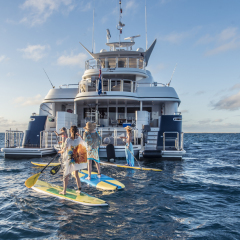 Cairns Luxury Private Charter Yacht | Water Activities | Stand Up Paddle Boards