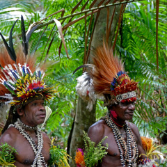 MacLaren Harbour  | Experience Authentic Papua New Guinea