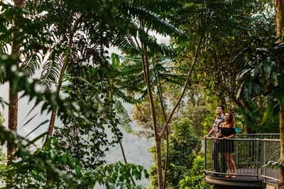 Mamu Tropical Skywalk at Wooroonooran National Park