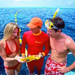Marine Biologists presentation on board the reef pontoon for all divers and snorkellers to enjoy