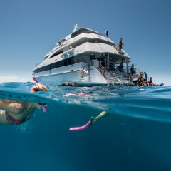 Maximum 130 Guests Full Day Great Barrier Reef Trip from Cairns