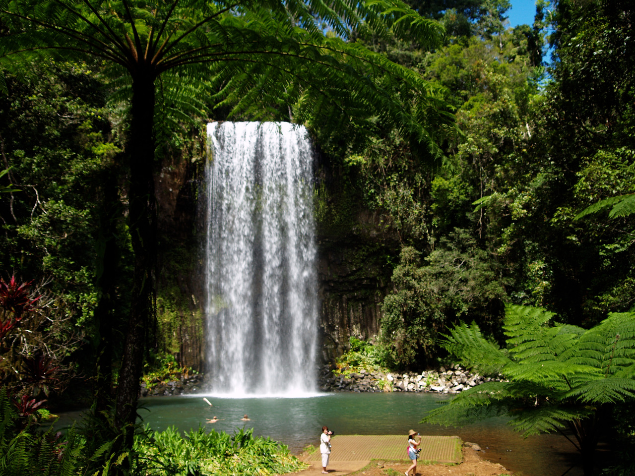 20 cheap and free things to do in Cairns |Cairns Australia Waterfalls