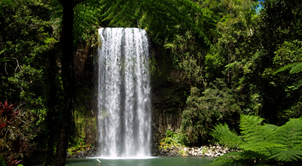 Milla Milla Falls on Atherton Tablelands Cairns